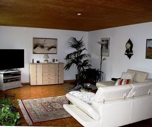 Revestimientos de paredes y techos