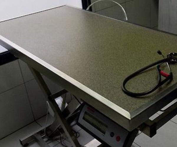 Clínica veterinaria completamente equipada en Madrid