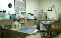 Urgencias veterinarias en Zaragoza en Clínica Veterinaria Utebo
