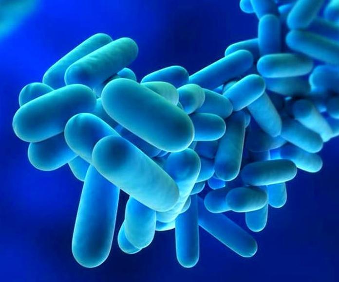 La Legionella