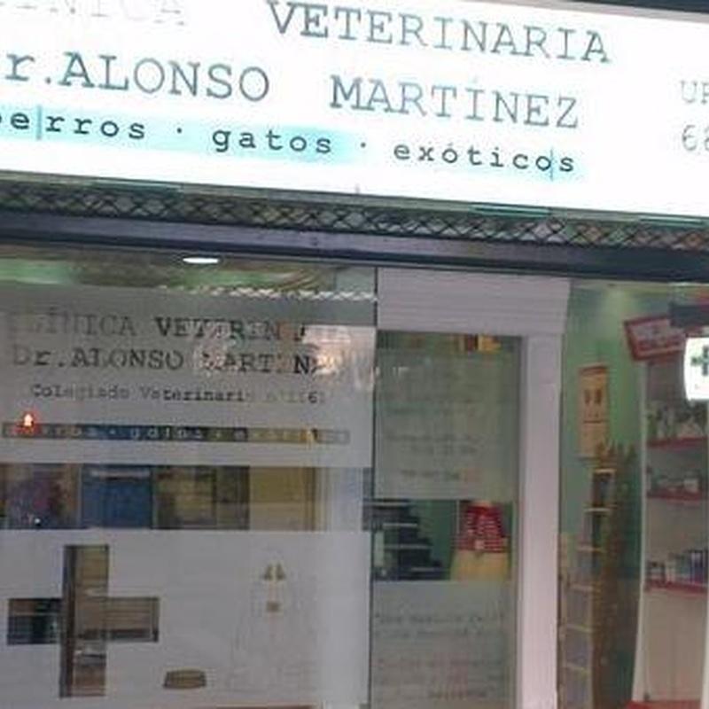 Servicios que ofrecen : Servicios de Clínica Veterinaria Dr. Alonso Martínez