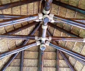 Construcciones junco africano