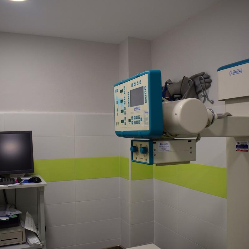 Radiología y ecografías: Servicios veterinarios de Clínica Veterinaria Parque de los Estados