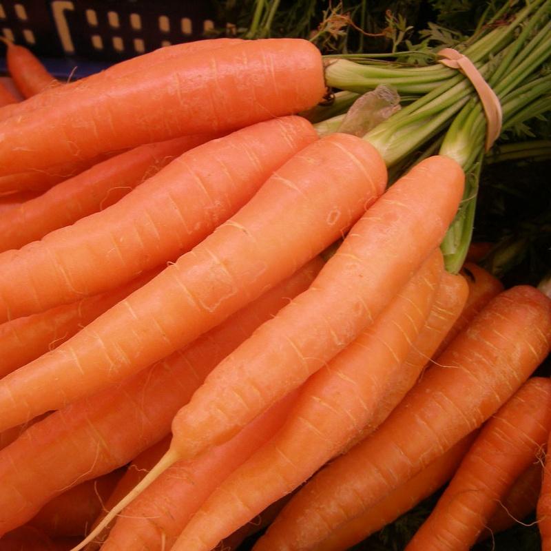 Zanahorias con su hoja