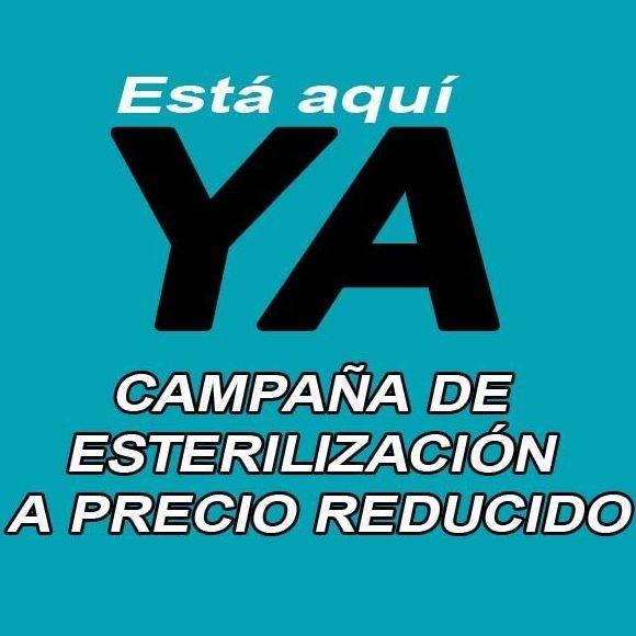 CAMPAÑA DE ESTERILIZACIÓN A PRECIO REDUCIDO