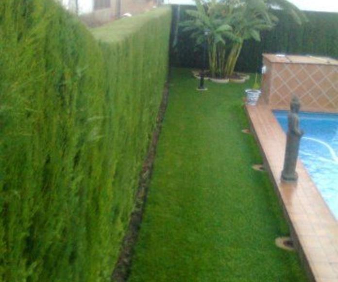 Jardinería: Servicios de Pavimentos Garvel