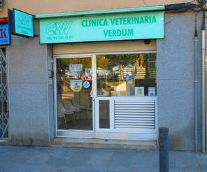 Dermatología veterinaria en Nou Barris, Barcelona | Clínica Veterinaria Verdum