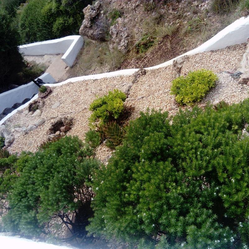 jardin: Servicios profesionales de Lluis Saurina Reformas Integrales