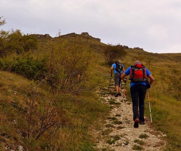 Actividades que realizamos: Servicios de Cortijo Rural Puerto Nuevo