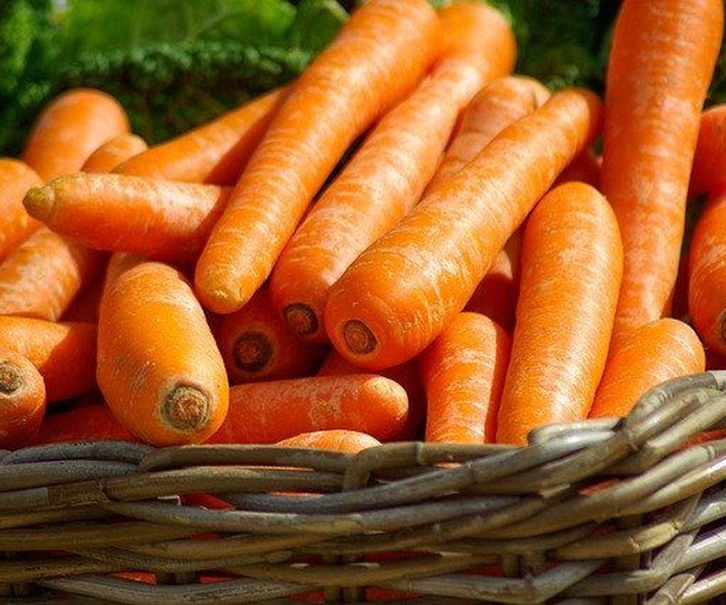 Desmontando y confirmando mitos sobre las zanahorias