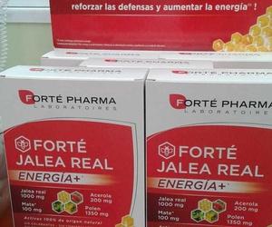 Jalea Real, refuerza tus defensas y aumenta tu energía. Una solución de origen natural
