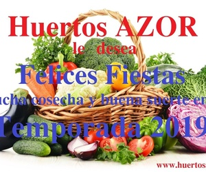 *huertos urbanos en Getafe Huertos Azor