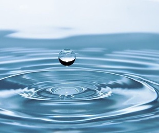 El agua. ¿Solo H2o?