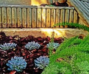 Galería de Jardines (diseño y mantenimiento) en Vitoria-Gasteiz | Indoor Garden