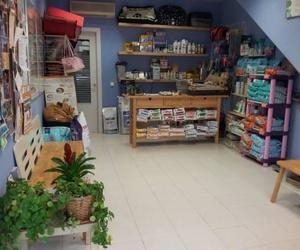 Clínica Veterinaria Camarma