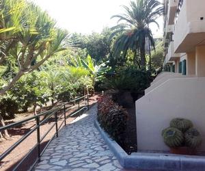 Trabajos de jardinería en urbanizaciones de Tenerife