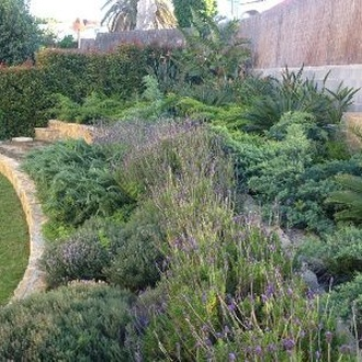 Paisatgisme i disseny de jardins