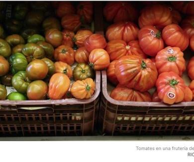 5 maneras de aprovechar un tomate (y ninguna es una ensalada ni un gazpacho)