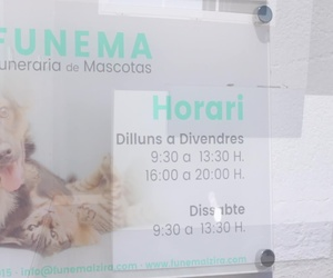 Tanatorio y crematorio de mascotas en Alzira, Valencia   Funema Alzira