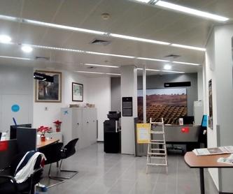 Pintura Ignífuga: Servicios de Pinturas Poyato
