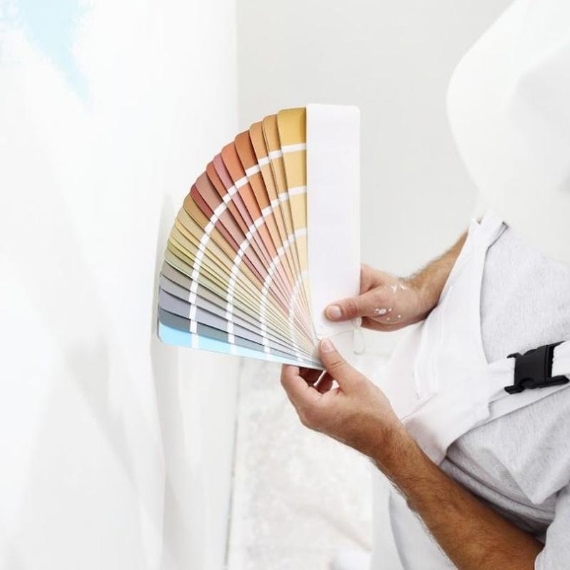 Pintura: Servicios de Refromas Fanjul