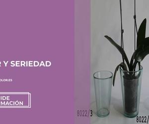 Vidrios decorativos en Valencia: Vitrocolor