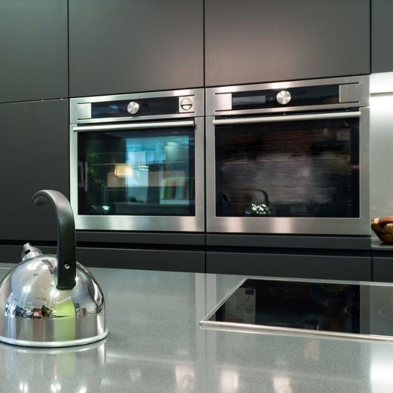 Reparación de hornos: Servicios de Briotec