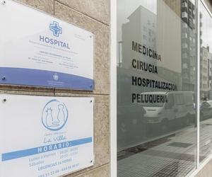 Veterinarios 24 horas en Avilés