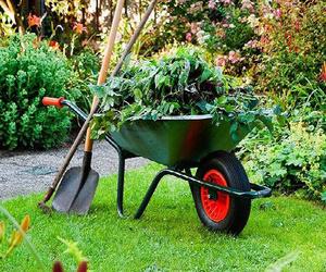 Servicio de jardinería en Baix Llobregat