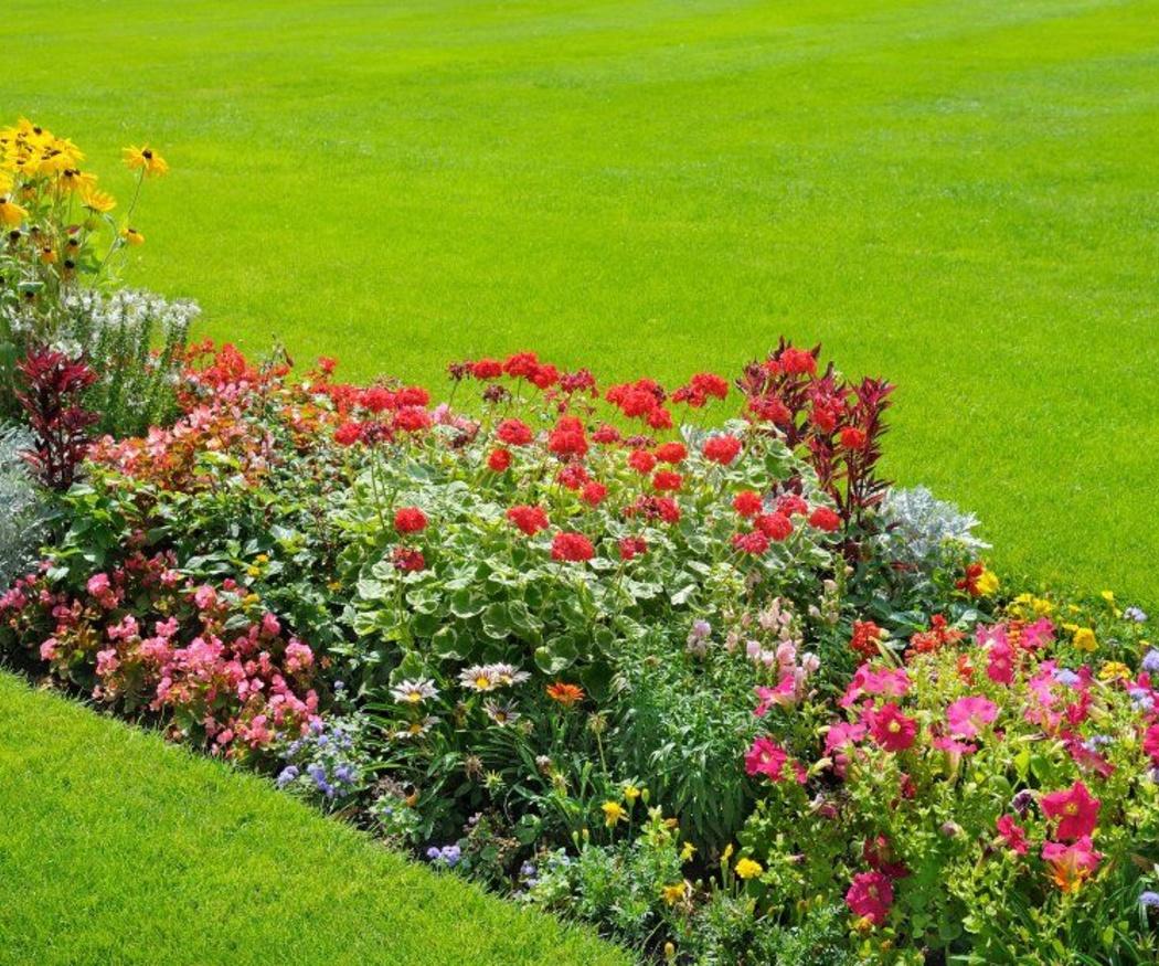 Los beneficios de un jardín en el hogar