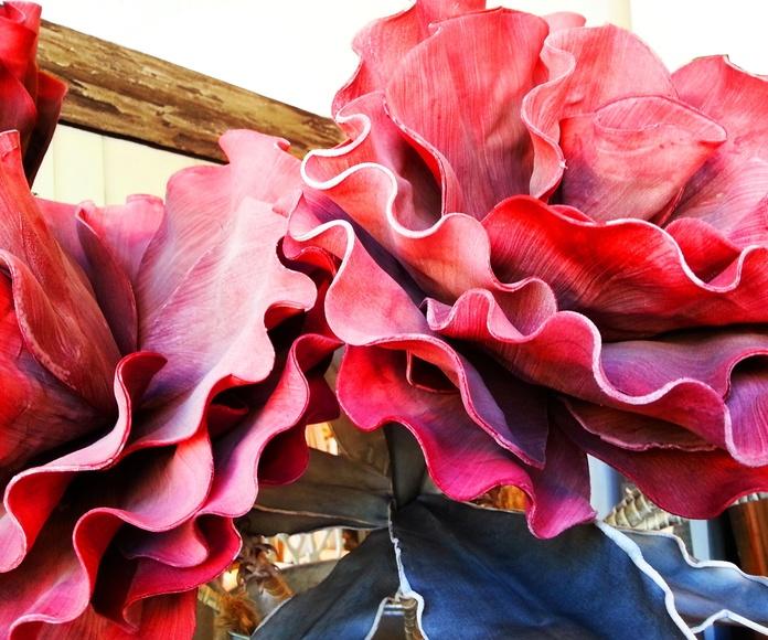 Flore de Foam Gigante Roja: Catálogo de Casa Nativa