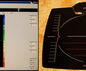 Plataforma para el análisis bio-mecánico de la marcha y de la postura.