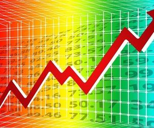 Informe de gestión económica