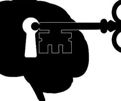 Mini cerebros