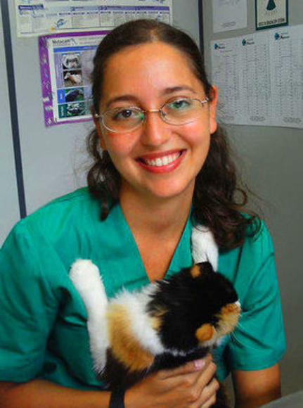 clinica veterinaria Gijon