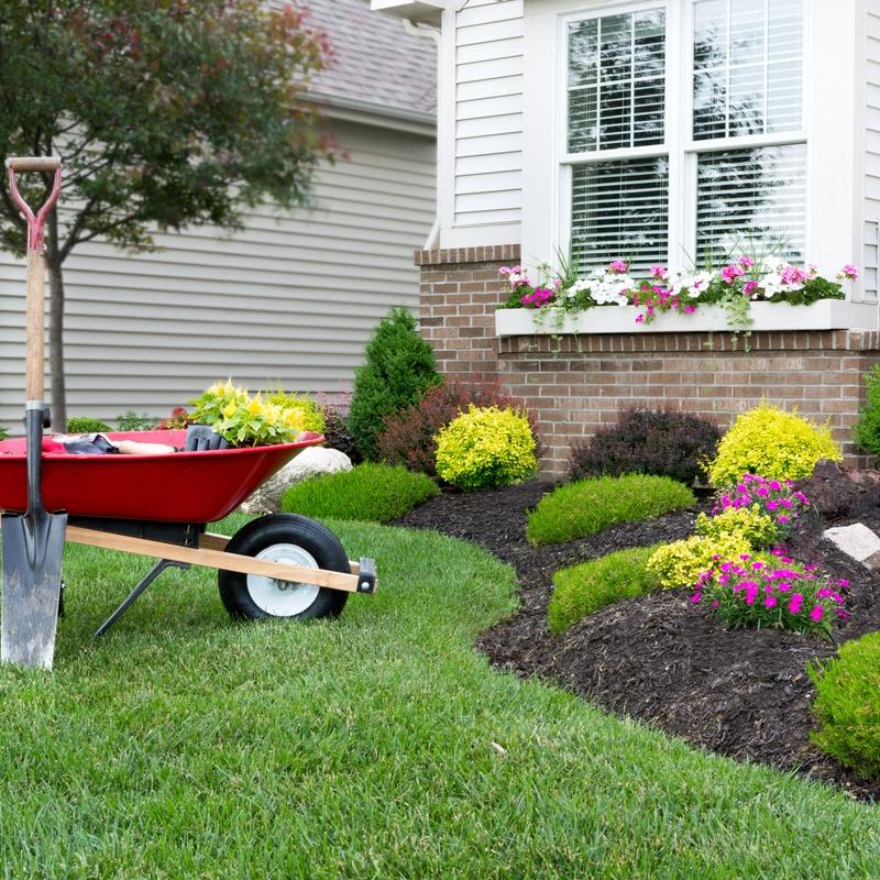 Jardinería: Servicios integrales de DSC Servicios