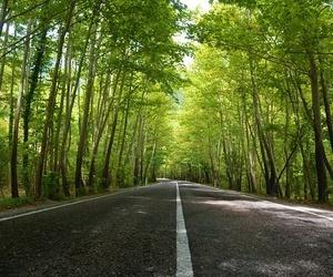 ¿Por qué se usa asfalto para las carreteras?