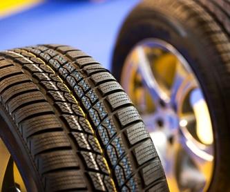 Mecánica rápida: Servicios y vehículos de MEC-OSONA