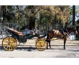 Paseos románticos por Sevilla en coche de caballos