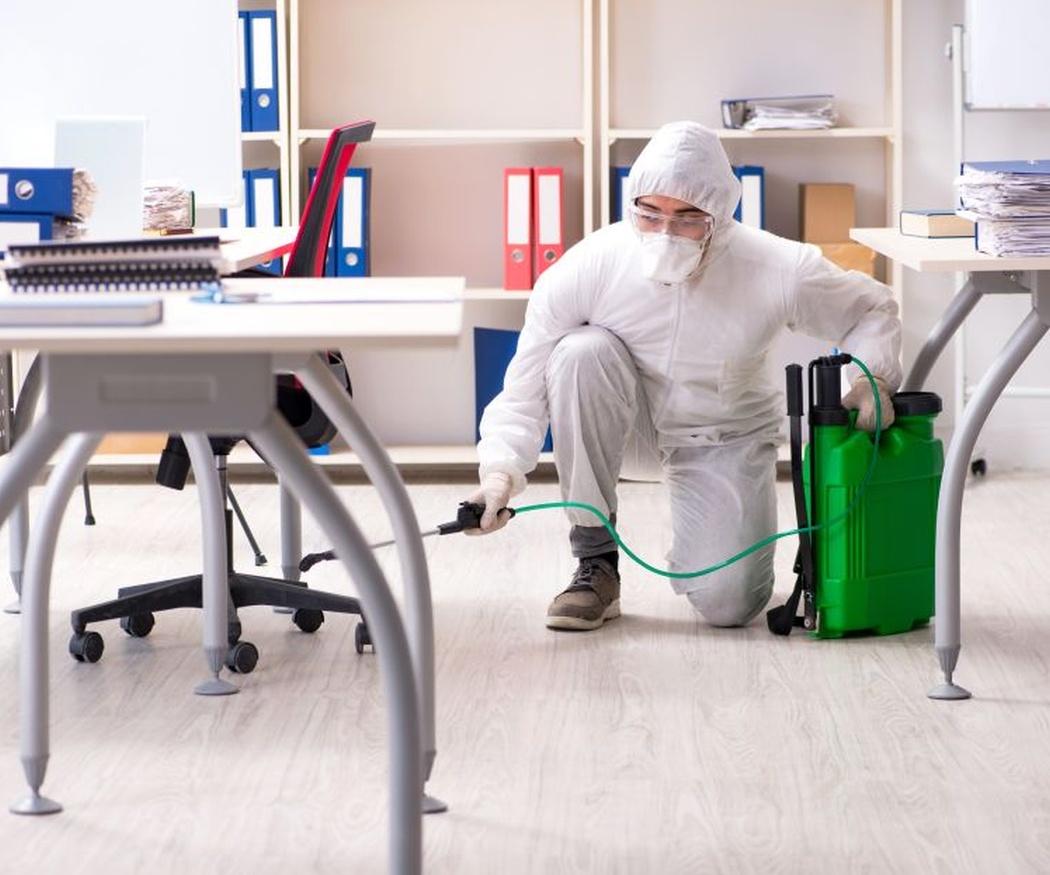 Cómo realizar una limpieza en profundidad eficaz