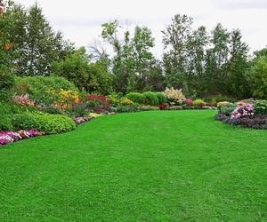 Mantenimiento de jardines en Santiago de Compostela