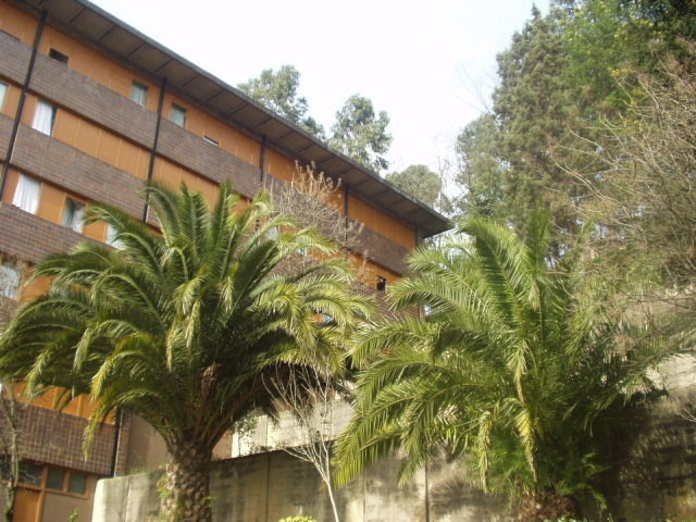 SOLICITUD DE INGRESO EN NUESTRO COLEGIO MAYOR: Alojamiento Universitario de Colegio Mayor Deusto