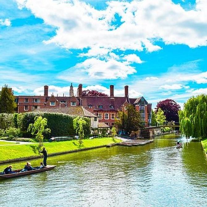 Datos sobre los exámenes de Cambridge