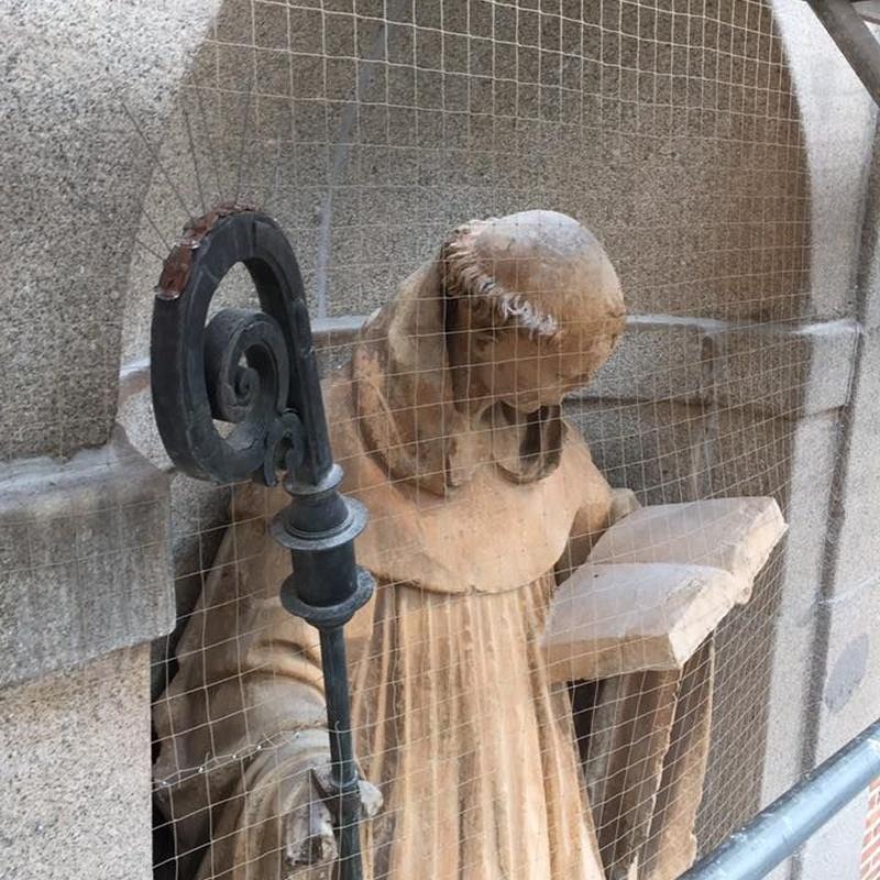 Sistemas de protección anti aves