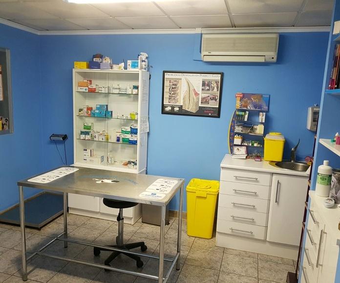 Clínica Veterinaria El Pilar. Consulta 1