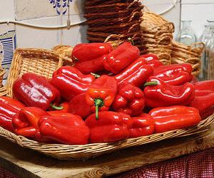 Todos los productos y servicios de Cocina mediterránea: El Asador de Orgaz