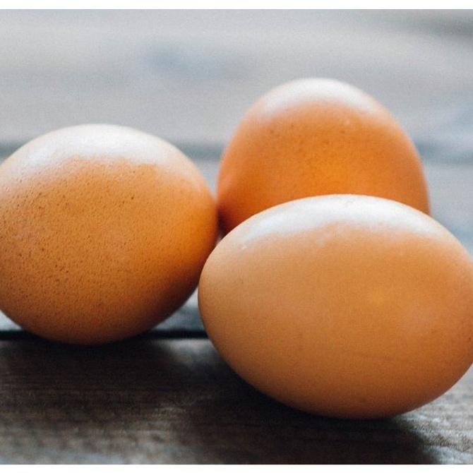 Las características nutricionales de la clara de huevo