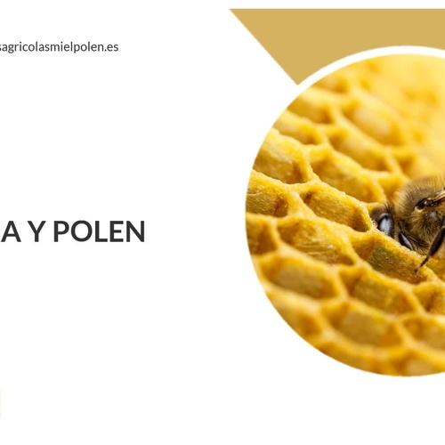 Miel de abejas en Cáceres