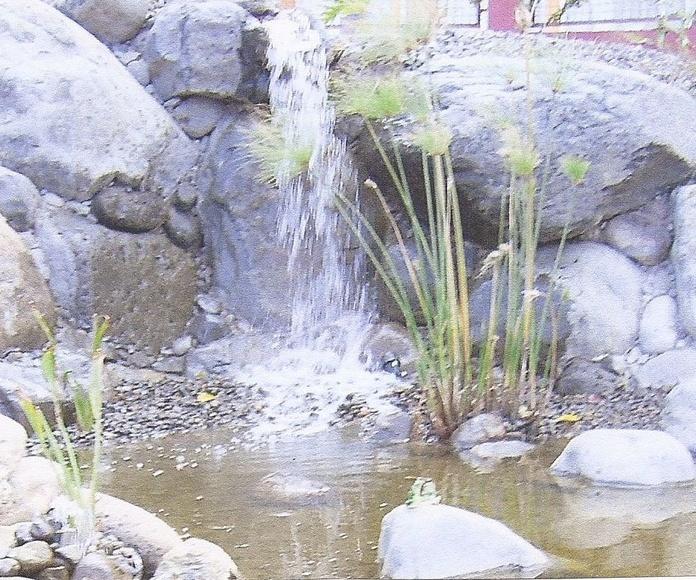 Charcas y estanques Naturales: Productos y Servicios de Islas Jardín, S.L.