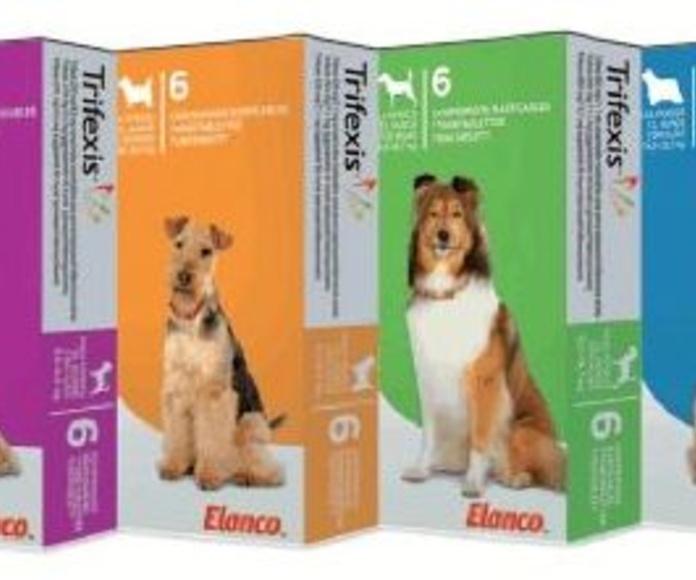 Producto combinada para eliminar pulgas y parásitos intestinales.